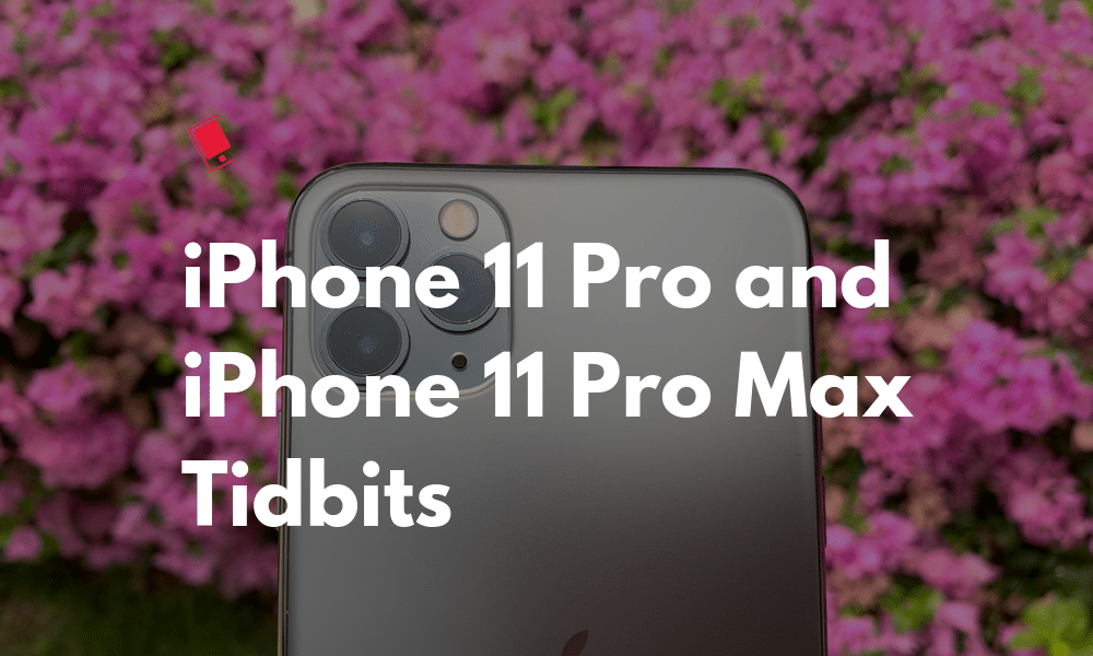 iPhone 11 Pro Max Tidbit</noscript>We probably know everything thing about the new iPhone 11 Pro and iPhone 11 Pro Max, and the teardowns of the new iPhones seem to have revealed the other unknowns such as the amount of RAM and capacity of the battery.<span id=
