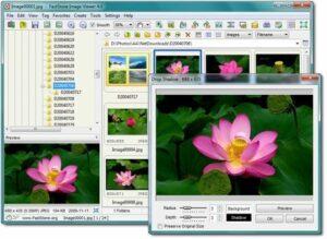 free photo organizer for window 10