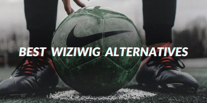 Wiziwig alternatives 2021